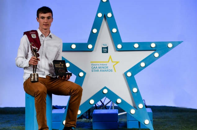 Electric Ireland Minor Star Awards - Player of the Year (Hurling)
