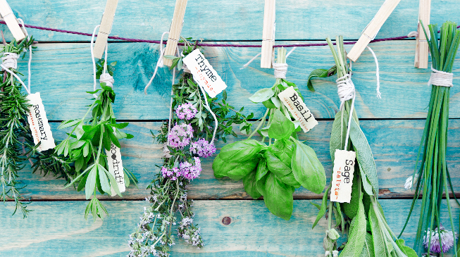 Guide To Growing A Herb Garden
